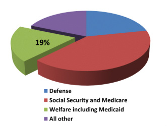 US Federal Government spends 19% of its budget on overt welfare programs, (including Medicaid).