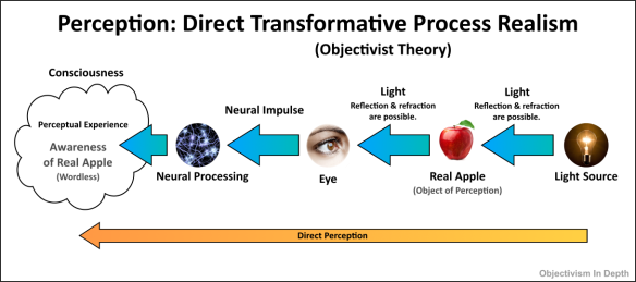 Diagram of Objectivist Theory of Perception - Direct Transformative Process Realism