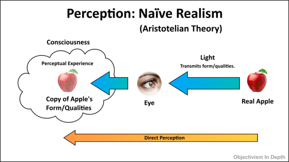 Naive Realism in visual perception diagram.